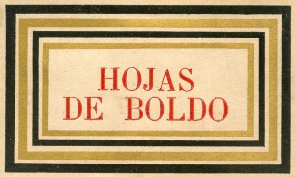 015_Hojas de Boldo