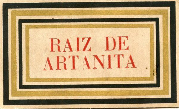 036_Raiz de Artanita