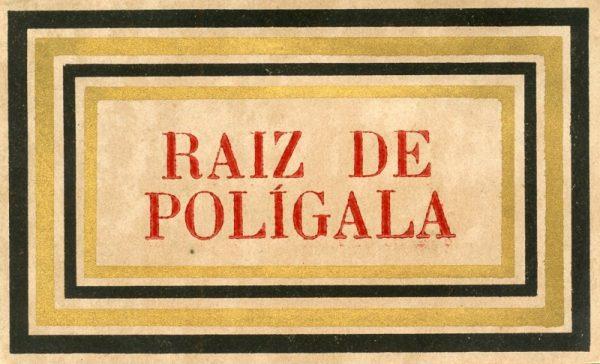 038_Raiz de Polígala