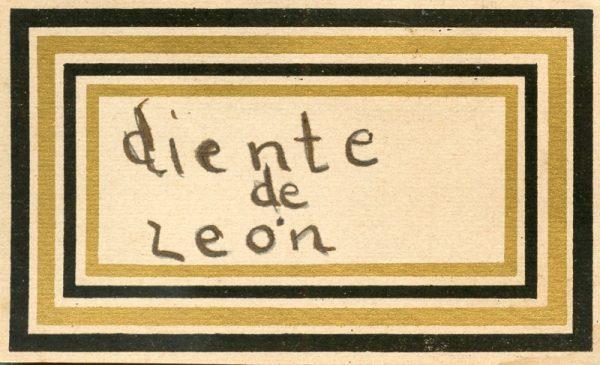 094_Diente de León