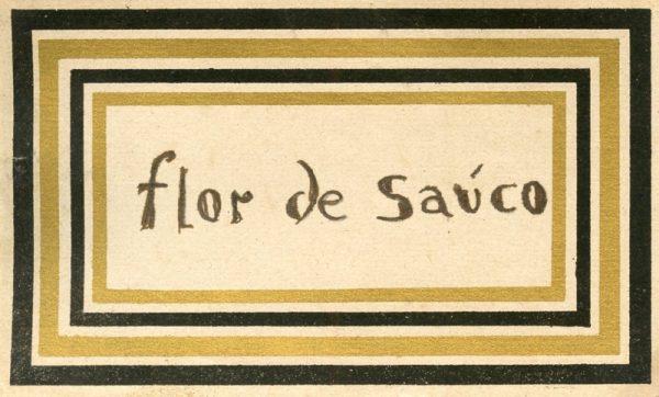 118_Flor de Sauco