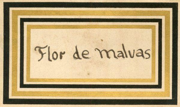 120_Flor de Malvas