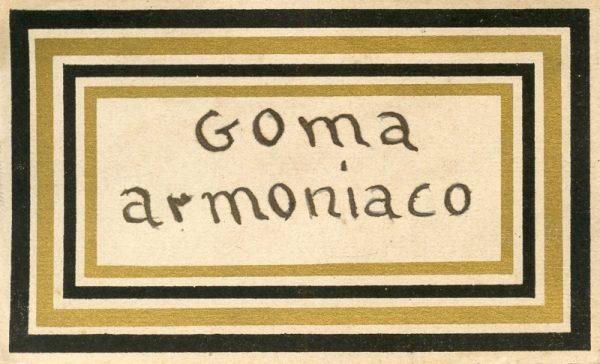 125_Goma Armoniaco