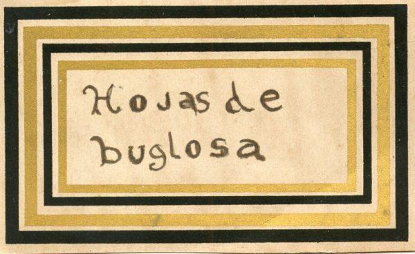 132_Hojas de Buglosa