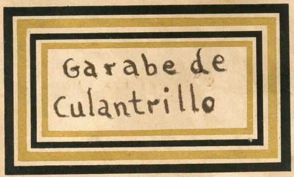 136_Jarabe de Culantrillo