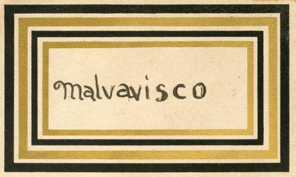 144_Malvavisco
