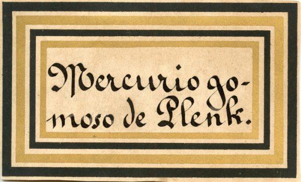 147_Mercurio Gomoso de Plenk