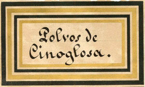 156_Polvos de cinoglosa