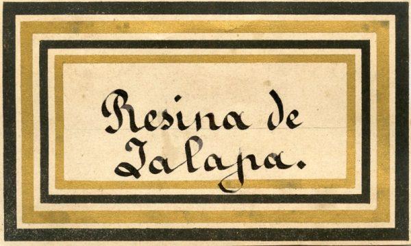 161_Resina de Jalapa