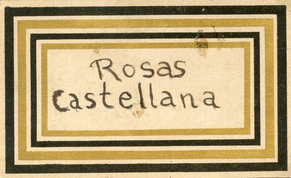 163_Rosas Castellana