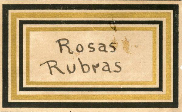164_Rosas Rubras