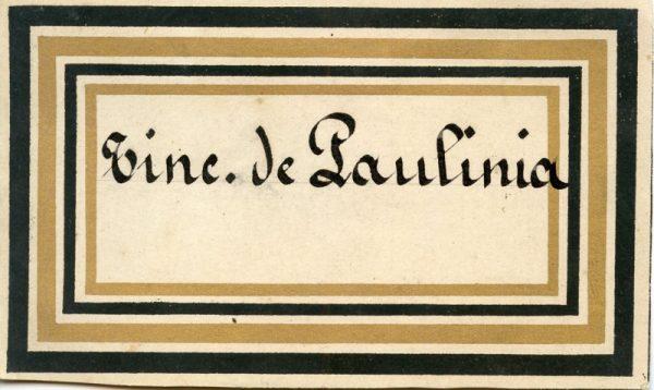 205_Tintura de Paulinia