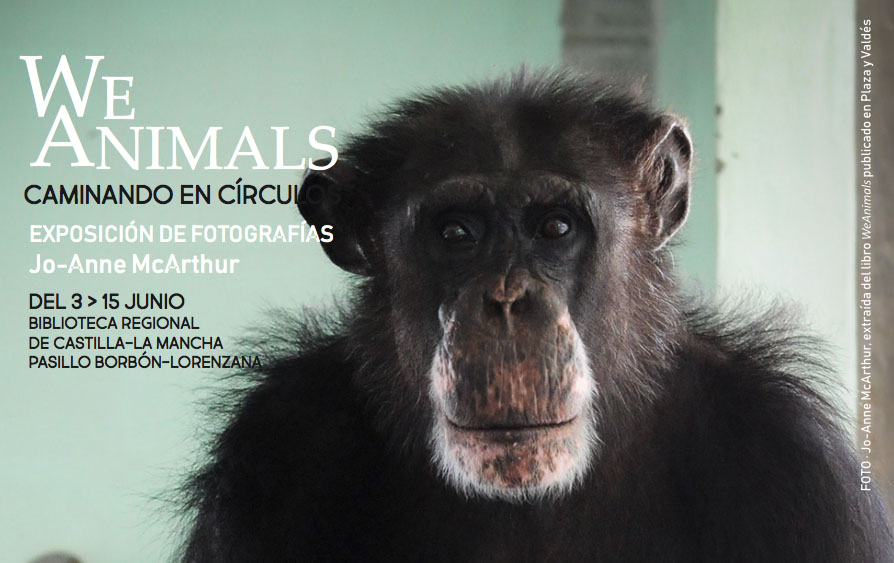 "http://www.toledo.es/wp-content/uploads/2019/06/biblio.jpg. Exposición ""We Animals"""
