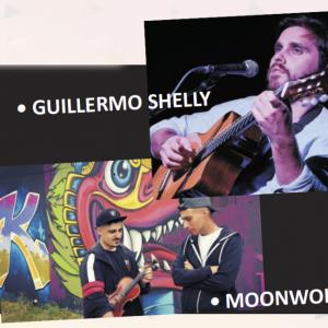 Festival de grupos de música locales