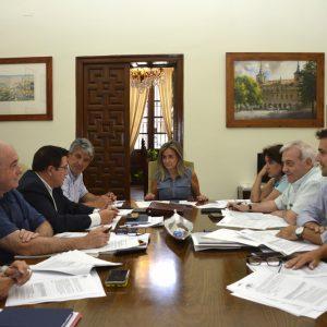 a Junta de Gobierno concede la licencia a apertura y funcionamiento a Puy du Fou