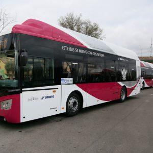l Ayuntamiento reforzará el servicio municipal de autobuses con motivo de la Feria y Fiestas en honor a la Virgen del Sagrario