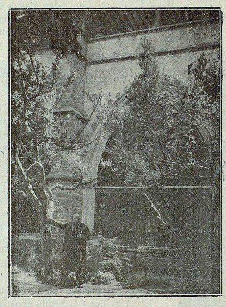 109_TRA-1921-169-Catedral, Mirlos del Claustro