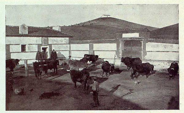 134_TRA-1923-191-La casona de San Martín de Pusa, corral-01