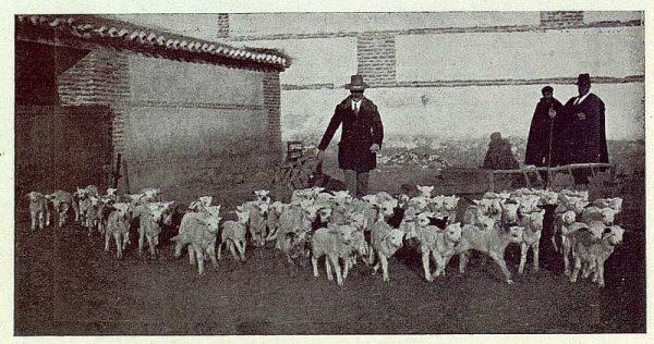 135_TRA-1923-191-La casona de San Martín de Pusa, corral-02