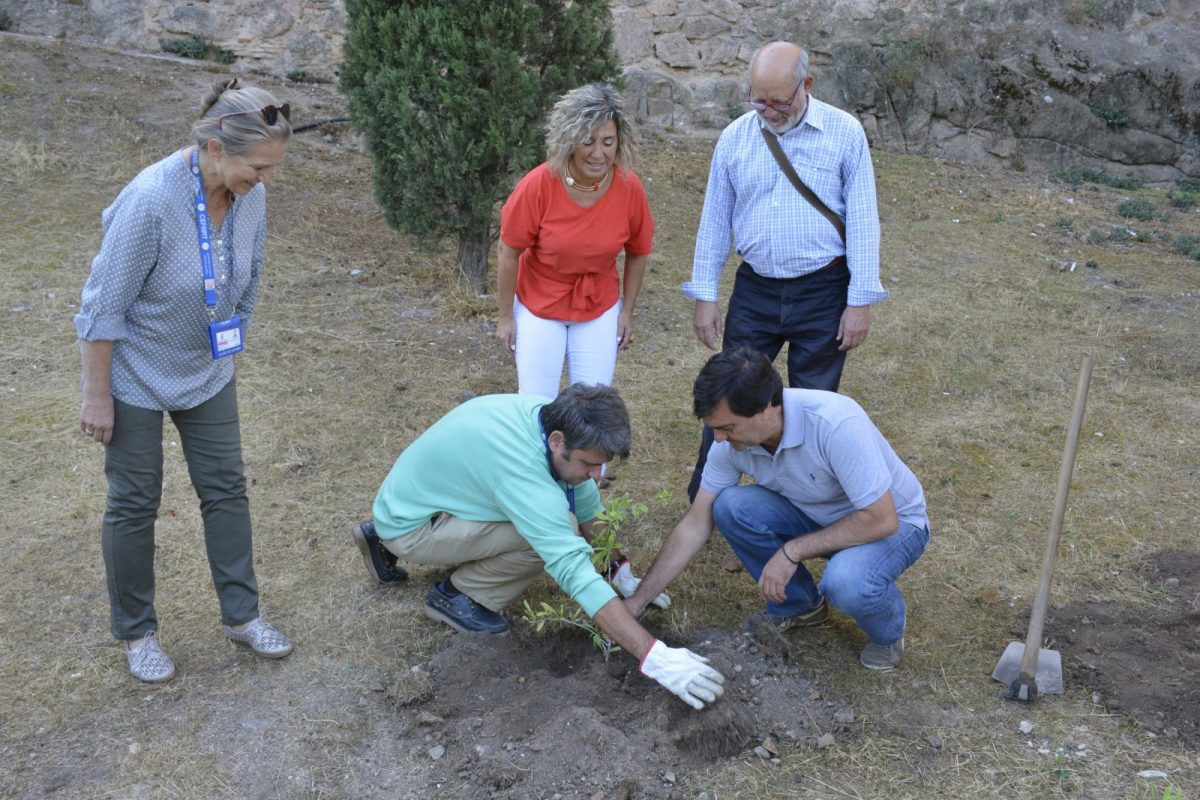 http://www.toledo.es/wp-content/uploads/2019/09/cambroneras_1-1200x800.jpg. El Ayuntamiento arropa a la Asociación Montes de Toledo y a la regional de Guías Oficiales en la recuperación de varias cambroneras