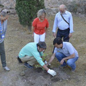 l Ayuntamiento arropa a la Asociación Montes de Toledo y a la regional de Guías Oficiales en la recuperación de varias cambroneras