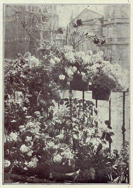 0364_TRA-1922-181-Catedral, vista desde un balcón-Foto Comendador