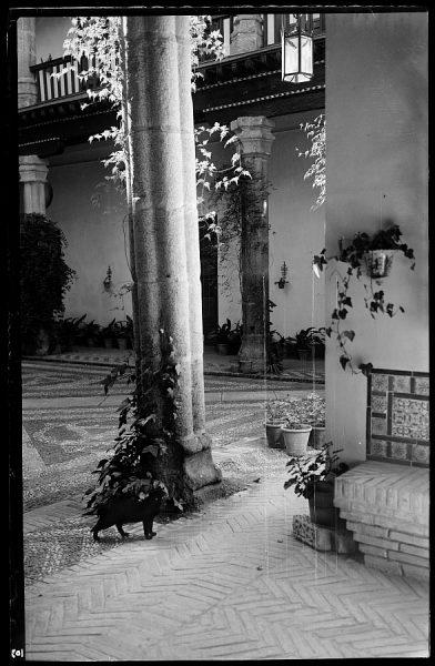 06 - 1958-06-00 - 103 - Toledo - Patio típico [Calle Núñez de Arce]