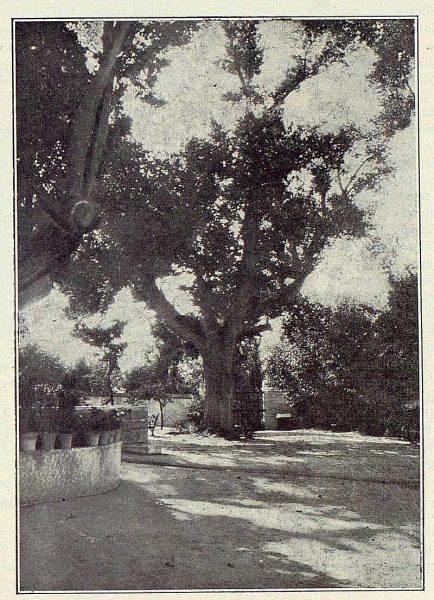319_TRA-1922-181-Palacio de Buenavista, entrada-Foto Rodríguez