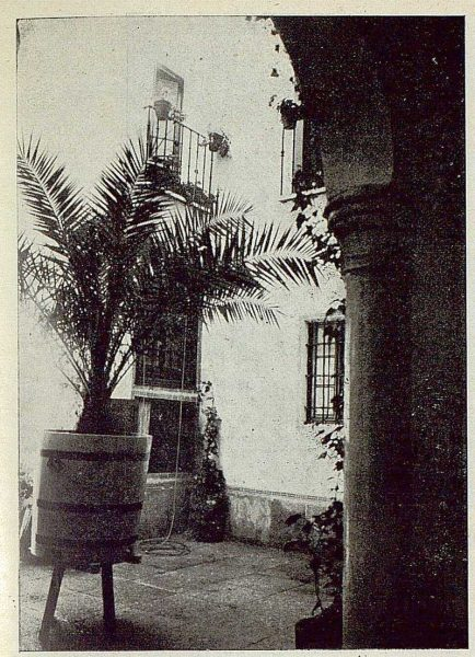324_TRA-1925-219-Palacio de Buenavista, detalle del jardín-Foto Rodríguez