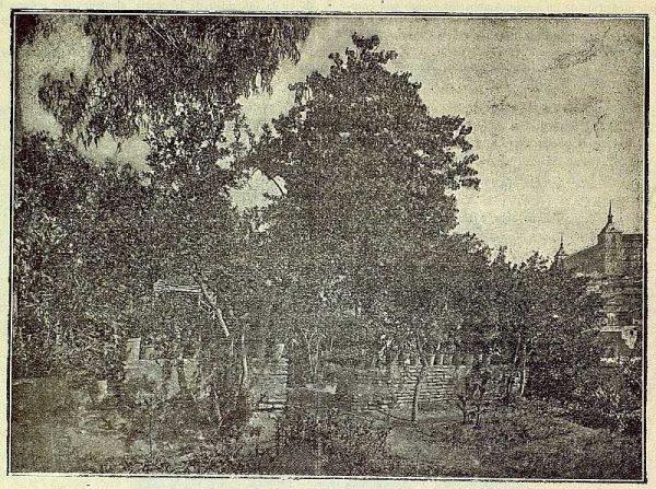 TRA-1916-060-Paisaje toledano-Foto Garcés