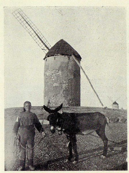 TRA-1928-252-Molinos de Viento, molinero-Foto Rodríguez
