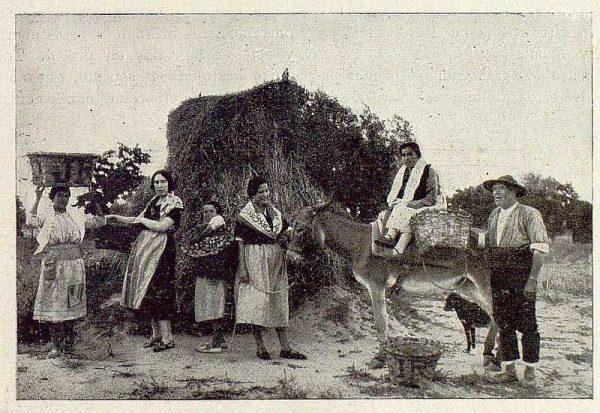 TRA-1929-271-Recolección de albaricoques, de vuelta de la faena-Foto Rodríguez
