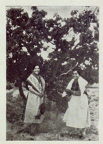TRA-1929-271-Recolección de albaricoques, dos cogenderas-Foto Rodríguez