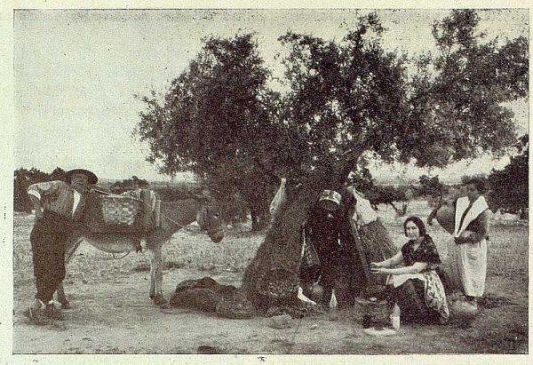 TRA-1929-271-Recolección de albaricoques, preparando el gazpacho-Foto Rodríguez