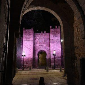 El Ayuntamiento iluminará de morado monumentos emblemáticos por el Día Internacional para la Eliminación de la Violencia Machista