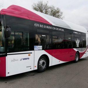 uevas medidas en las líneas de autobuses desde el día 7 a favor de la sostenibilidad y la conservación del patrimonio en el Casco
