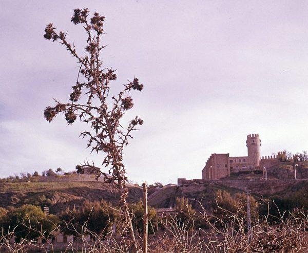 042-AKE_020_Vista del castillo de San Servando