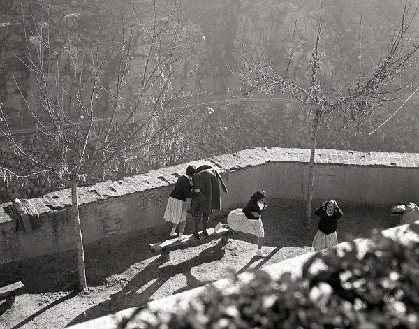066-AKE_150_Jugando al escondite en los jardines del Alcázar