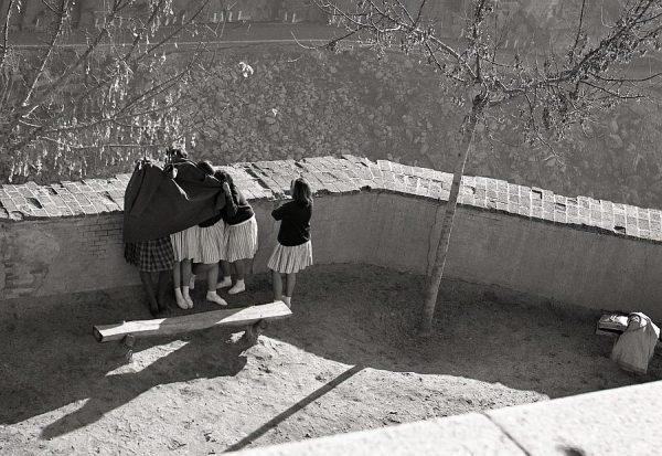 067-AKE_151_Jugando al escondite en los jardines del Alcázar