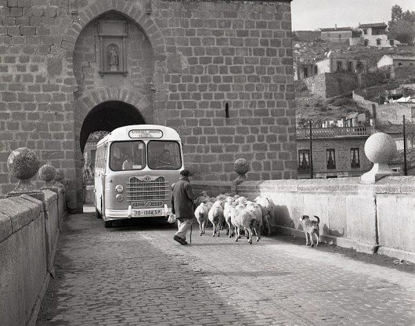 079-AKE_119_Un autobús y un rebaño se encuentran en el puente de San Martín