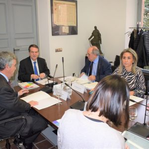a alcaldesa de Toledo participa en calidad de vicepresidenta en la primera Junta de Gobierno de la FEMP de 2020