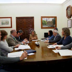 a Junta de Gobierno aprueba presentar la renovación del alumbrado de la calle Río Guadarrama a una convocatoria de la UE