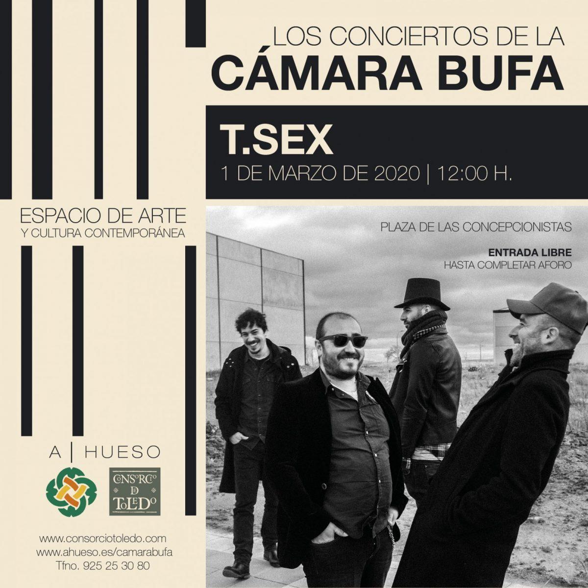 http://www.toledo.es/wp-content/uploads/2020/02/tsex-camara-bufa-2020-1200x1200.jpg. Los Conciertos de la CÁMARA BUFA: T.SEX