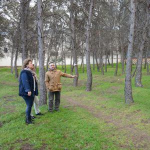 l Ayuntamiento interviene en el pinar de la N-400 a la altura de la calle Río Sagreda donde lleva a cabo actuaciones de mantenimiento