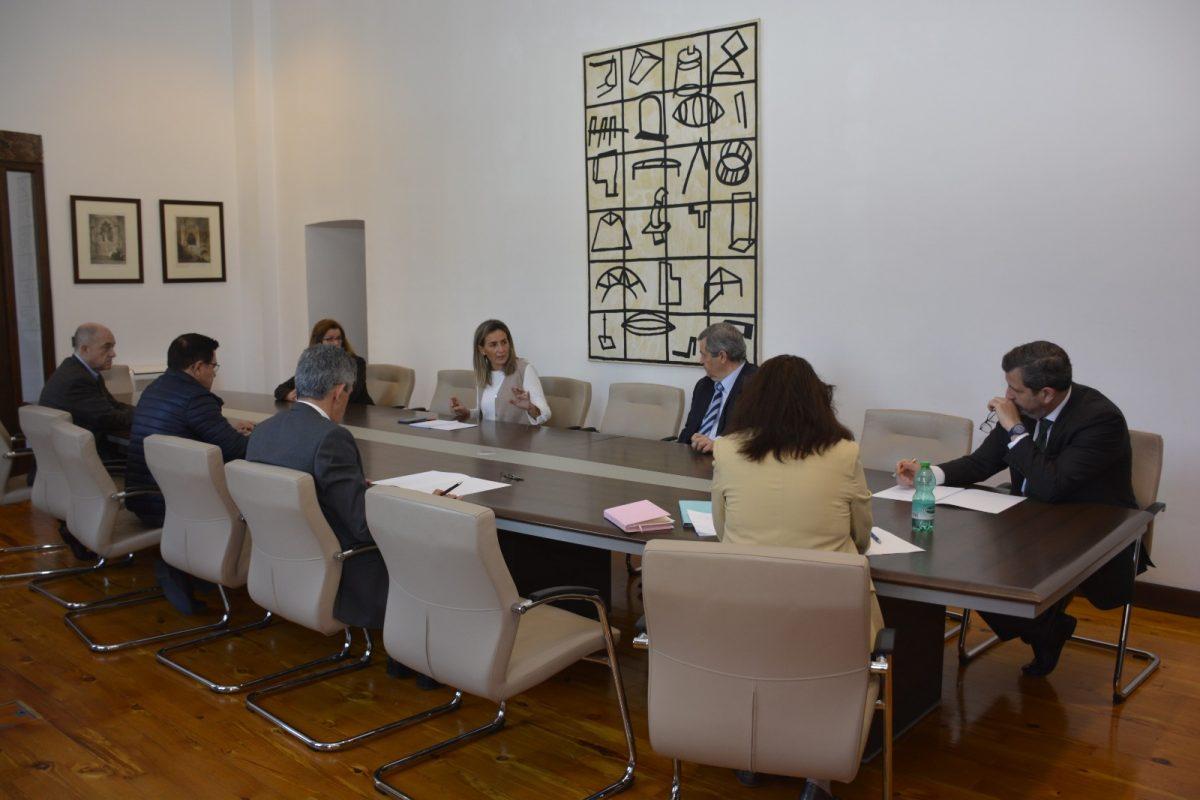 http://www.toledo.es/wp-content/uploads/2020/03/milagros-tolon_reunion-fedeto-y-camara-comercio-1200x800.jpeg. Milagros Tolón traslada a los empresarios las medidas decretadas por el Gobierno local para paliar los efectos de la crisis del Codvid-19