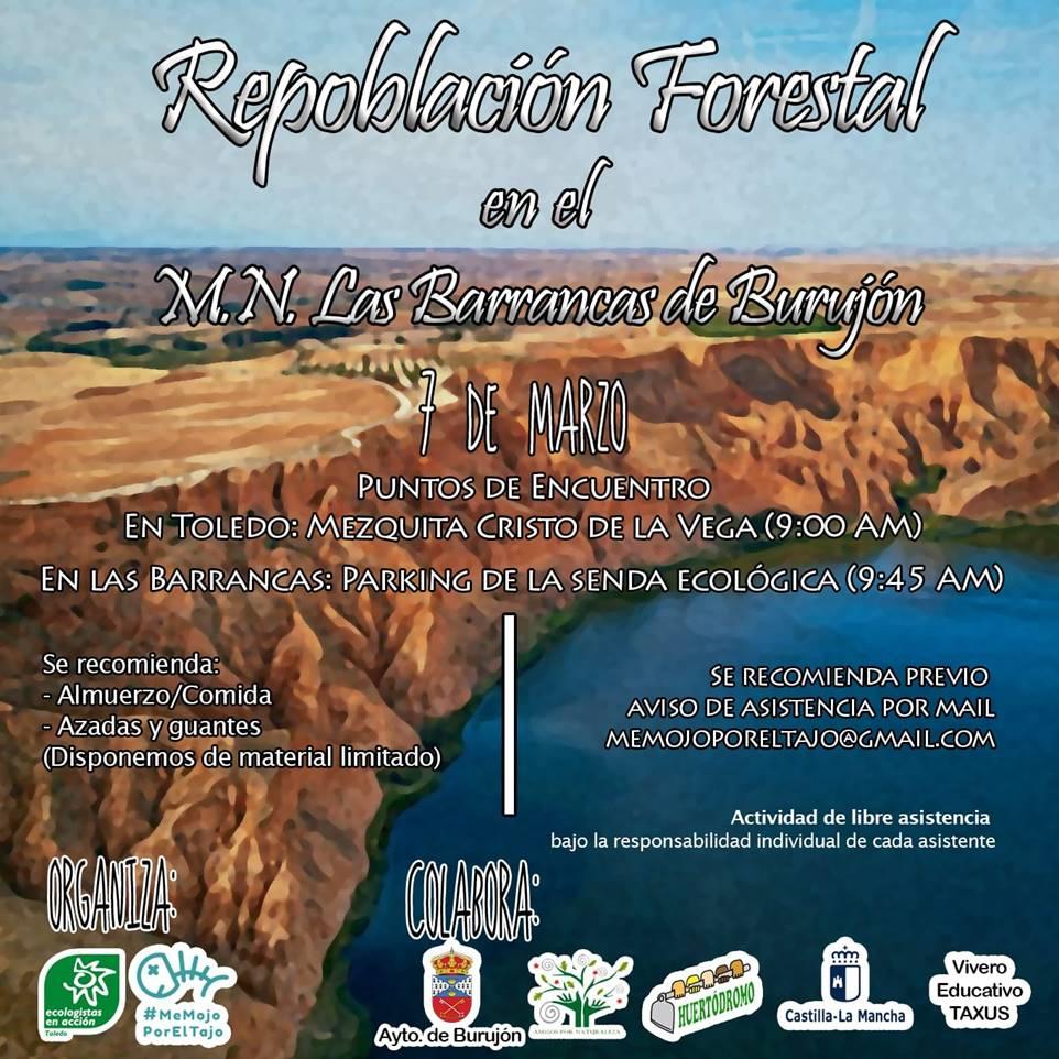 http://www.toledo.es/wp-content/uploads/2020/03/repoblacion-barrancas-de-burujon.png. Acción ecológica: Repoblación forestal en el M.N. Las Barrancas de Burujón