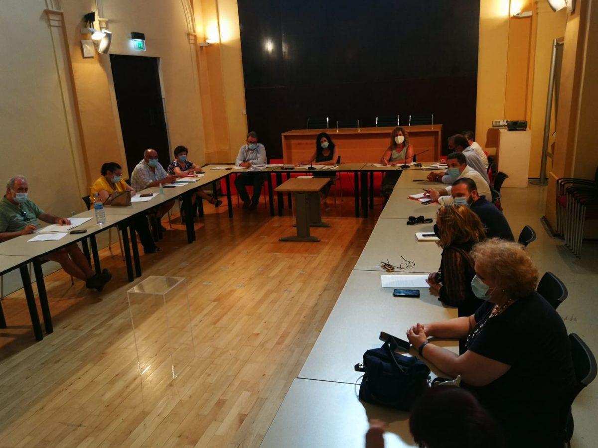 https://www.toledo.es/wp-content/uploads/2020/07/consejo-local-de-medio-ambiente_20200731-1200x900.jpeg. El Ayuntamiento traslada al Consejo de Medio Ambiente las nuevas líneas estratégicas para el control poblacional de palomas