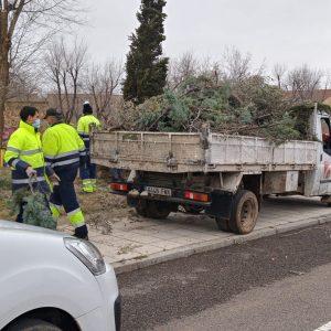 l Ayuntamiento continúa el fin de semana con las labores de retirada de ramas caídas en la vía pública tras el temporal