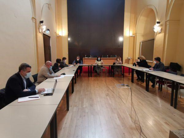 20210205_ConsejoMedioAmbiente (1)