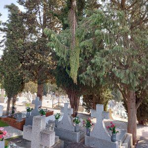 l Cementerio Municipal abre con normalidad a excepción de la puerta principal y zonas en las que se sigue actuando por 'Filomena'